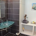 Shower room with wheel-in shower and accessible washbasin